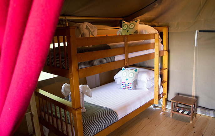 Safari Tent Bunk Room