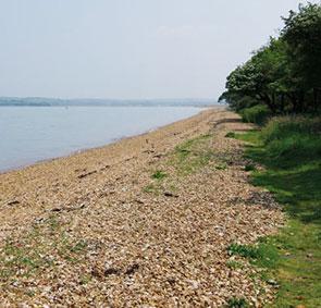 hamstead point beach
